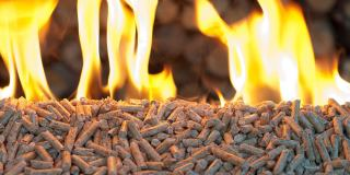 Burning wood pellets. (Photo: Black Isle Renewables)