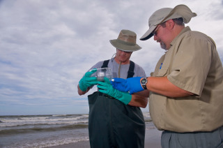 EPA workers collecting oil and water samples at Grand Isle, Lousiana in June, 2010 (Photo: USEPA)