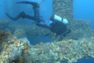 porter dive video1