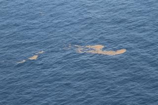 Surface oil off Louisiana's coast, July 2010. (Photo: Jonathan Henderson/Gulf Restoration Network)