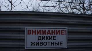 A sign on Tkachev's fence reading 'Beware! Wild Animals.' (Photo: Bellona/EWNC/Greenpeace)
